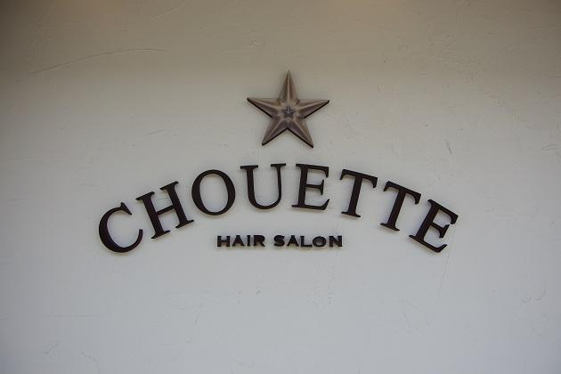 CHOUETTE (1)