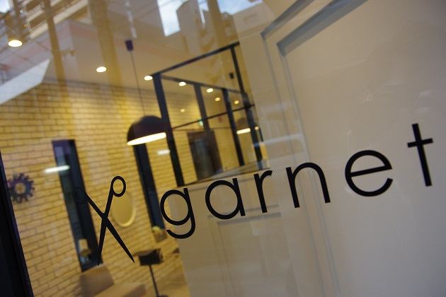garnet (1)